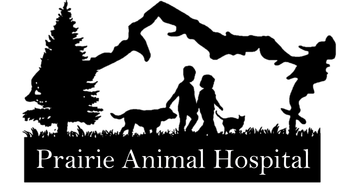 https://prairieanimalhospital.com/wp-content/uploads/2018/03/cropped-Transparent-Logo-7.png